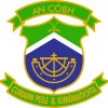 McSweeney lands a knockout blow as Cobh progress to East Cork football final